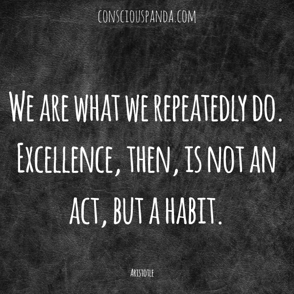 we-are-what-we-repeatedly-do-excellence-then-is-not-an-act-but-a-habit
